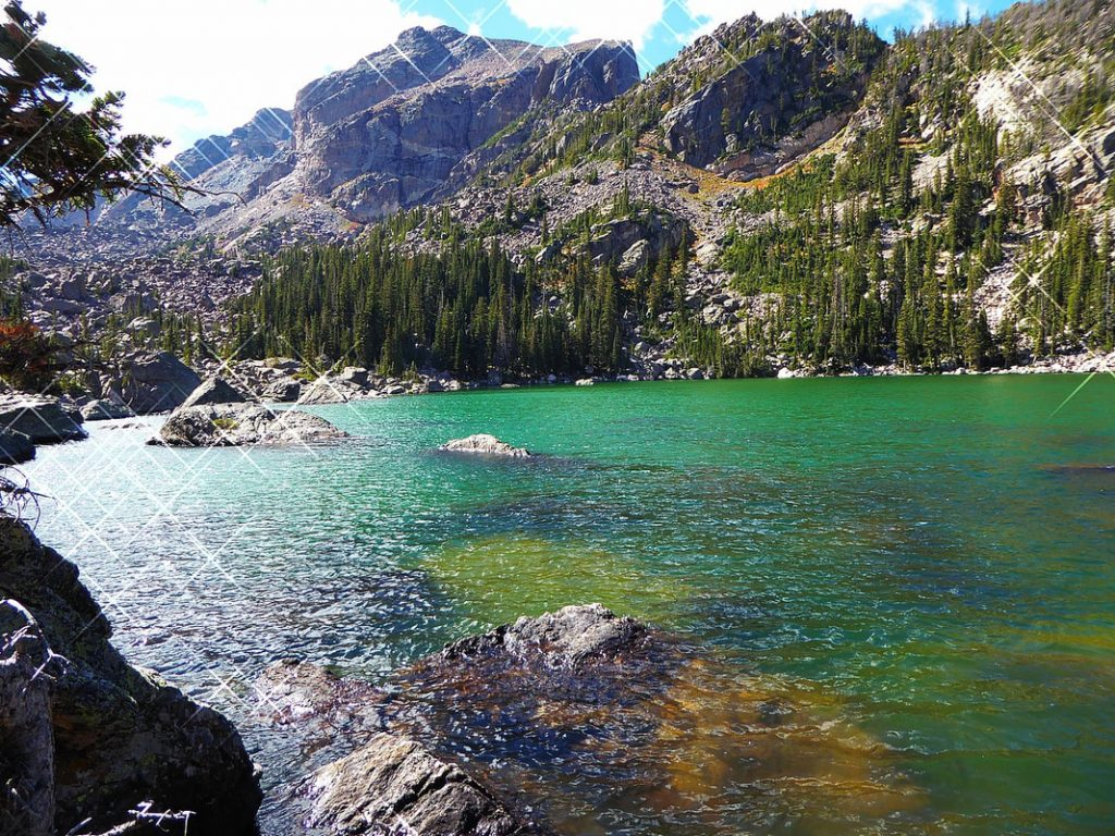 Bear Lake Lake Haiwaya Yellowstone NP