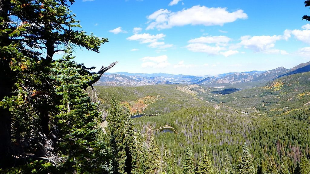 Bear Lake View from the top