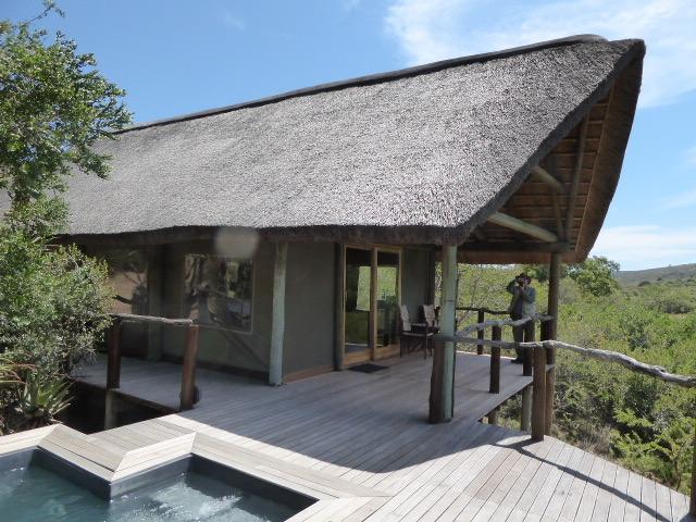 Bayethe Lodge Shamwari Game Reserve