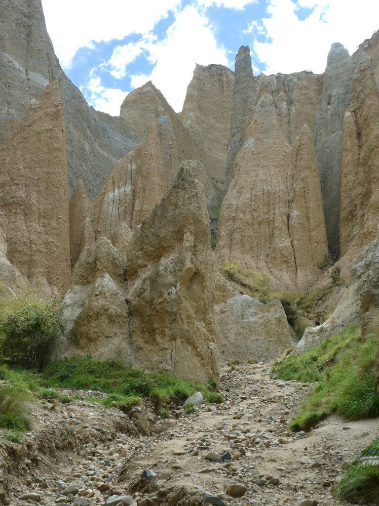 Christchurch Clay Cliffs