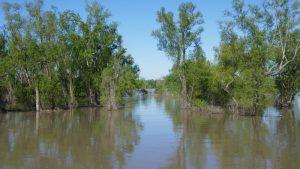 Mississippi River – Laisser les Bons Temps Roulez …