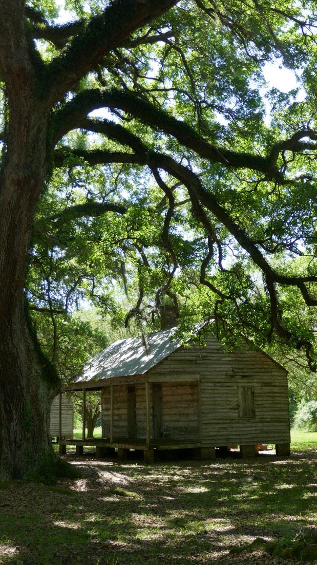 Alligators Snakes and Mosquitos Deep South USA Slave Quarters - Evergreen Plantation