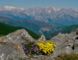 Mountain Heaven in the Picos de Europa