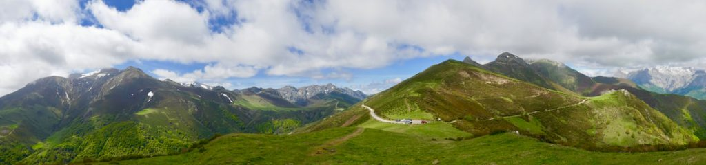 Wildflower Walking Picos de Europa