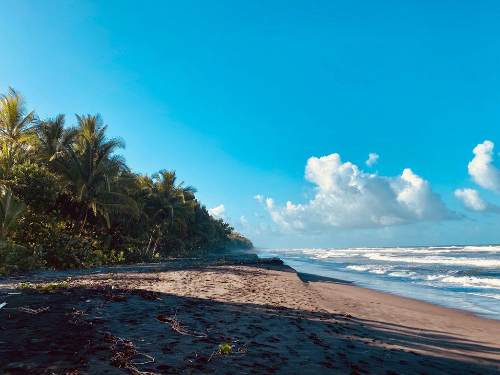 Coconut fringed Caribbean Sea Tortugero