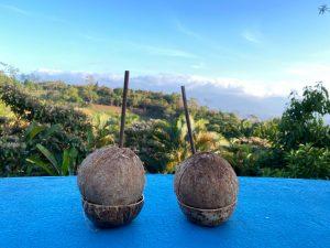 Accommodation Review – Xandari Resort & Spa –Alajuela