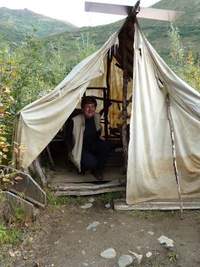 Denali National Park Denali Lodgings
