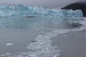 Hubbard Glacier – Totally Awesome!