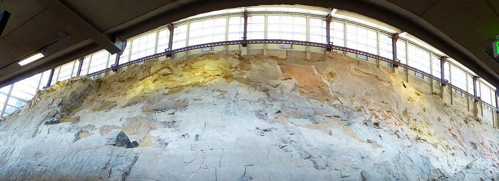 Dinosaur National Monument Dinosaur Log Jam Utah