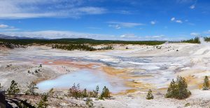 Norris Geyser Basin – Let's go for a Hike – Across a Boiling Cauldron?