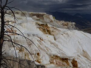 Mammoth Hot Springs and Steam