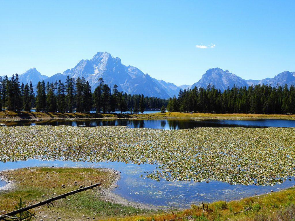 Grand Teton National Park Swan Lake