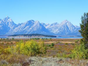 Read more about the article On the Trail to Grand Teton National Park