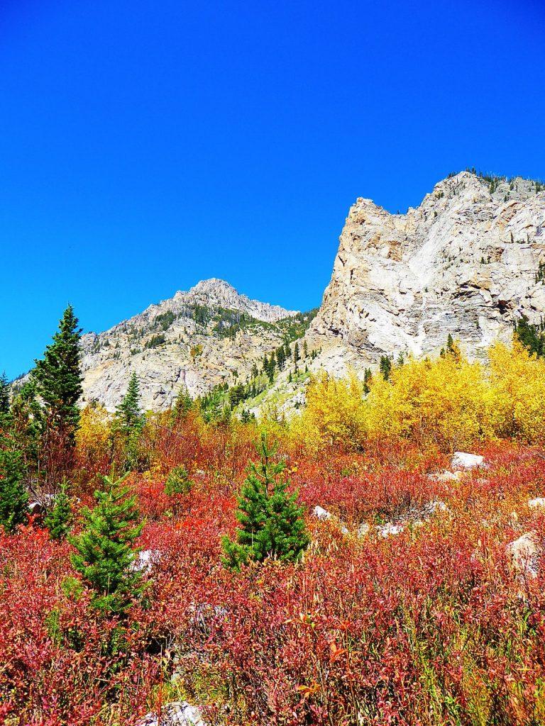 Cascade Canyon Autumn Gold Grand Teton National Park