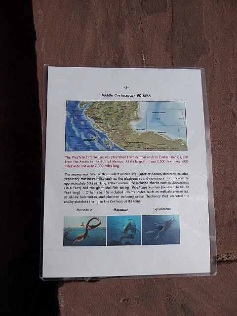 Colorado National Monument Previous inhabitants marine creatures