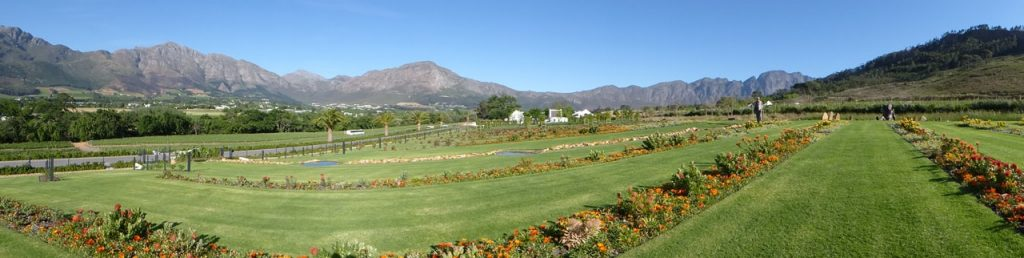 Bon appetit Franschhoek The Mullineux and Leeu Winery South Africa