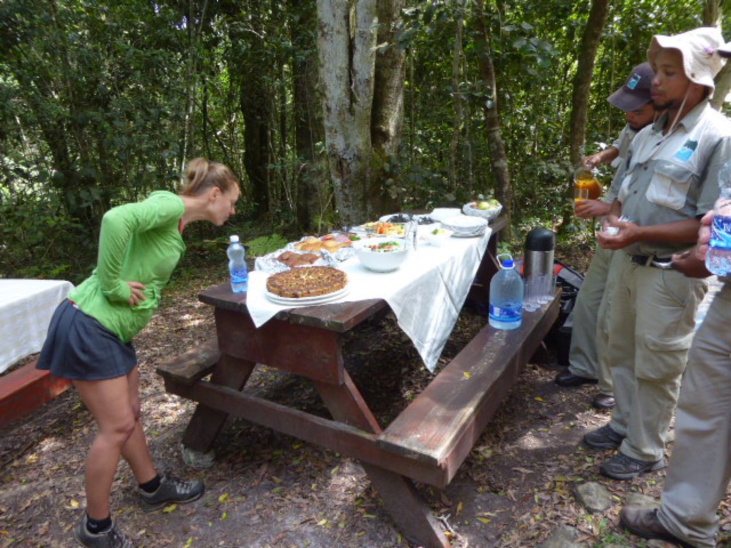 Hike to the Fernery Dolphin Trail picnic lunch