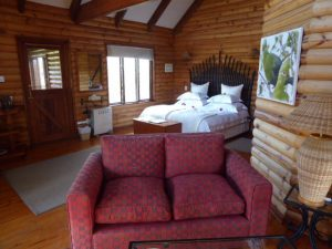 Accommodation Review – The Fernery