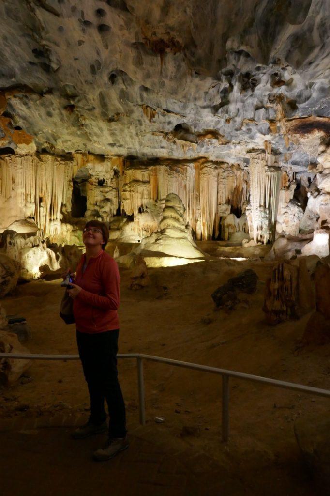 Oudtshoorn Cango Caves Bats
