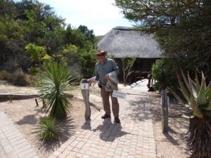 "Arrival at Shamwari – ""By-ye-thi"" I salute you!"