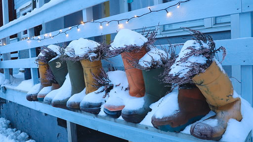 North Cape Welly boot flower pots Norway