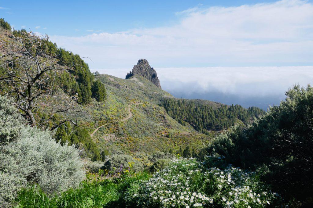 Up above the clouds - hiking in La Caldero de los Pinos