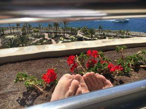 Springtime in Gran Canaria