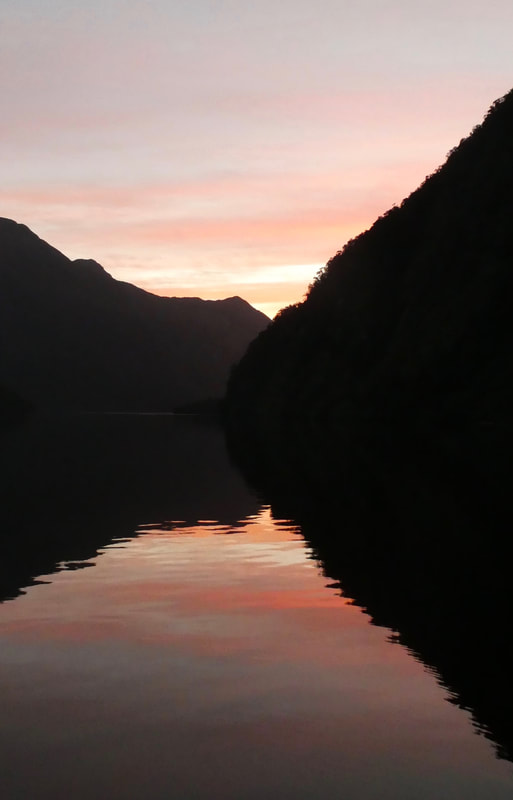 Experience the Sounds of Silence of Shadowland Doubtful Sound