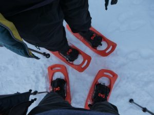 Day 3 – It's time for the Snowshoes!