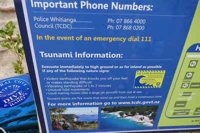 The Temperature is Rising Hot Water Beach Whangamatā - Tsunami Warnings