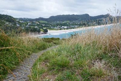 The Temperature is Rising Hot Water Beach Hahei Beach