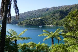Sanctuary in the Sounds – Punga Cove Resort – Queen Charlotte Sound