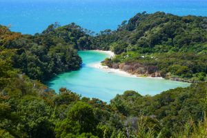 Abel Tasman Coastal Tramp – Dip your Toes into Cool Clear Turquoise