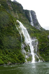 Wairarapa … Learning the Lingo in Milford Sound