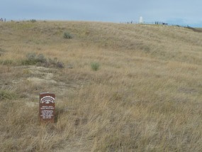 Battle of the Little Bighorn Custor's Last Stand
