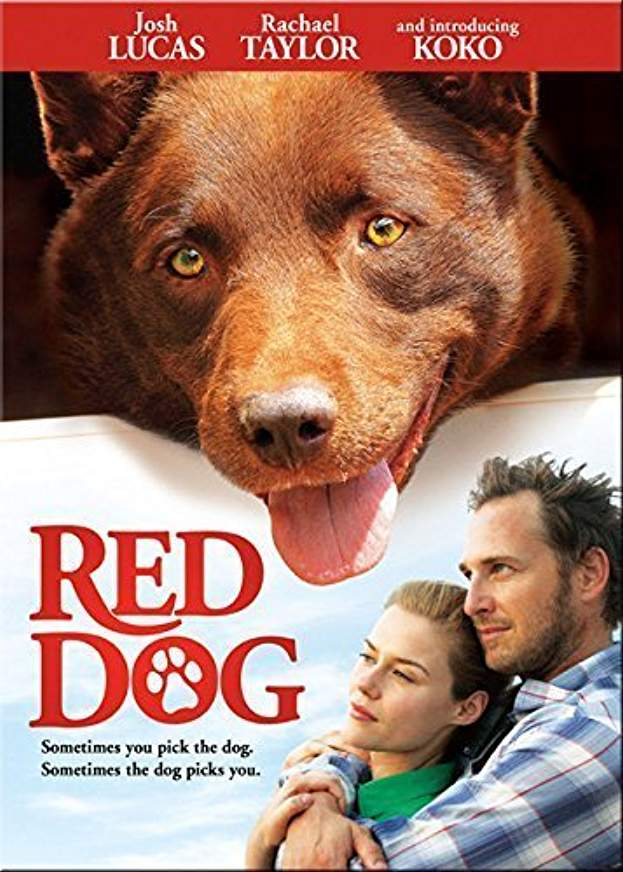What I'm Watching - Western Australia Films - Red Dog