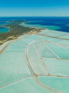 Monkey Mia to Ningaloo Reef – A Scenic Flight over Shark Bay and a Thorny Devil!