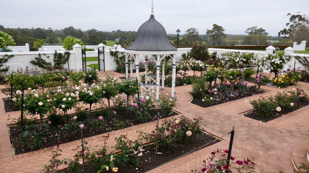 Voyager Estate WA Rose Garden