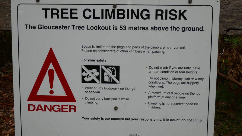Pemberton WA Gloucester Tree