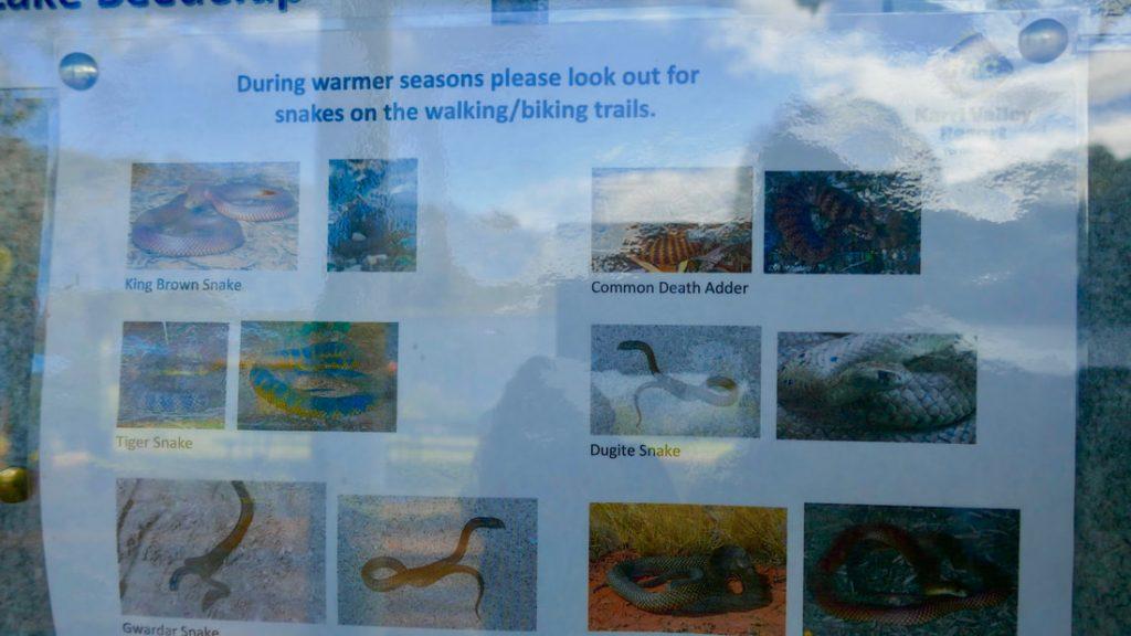 Karri Valley Resort WA Snake Warnings