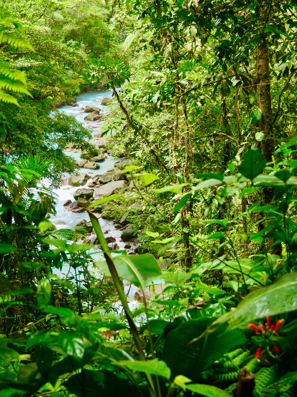 Celeste River Rio Celeste Costa Rica