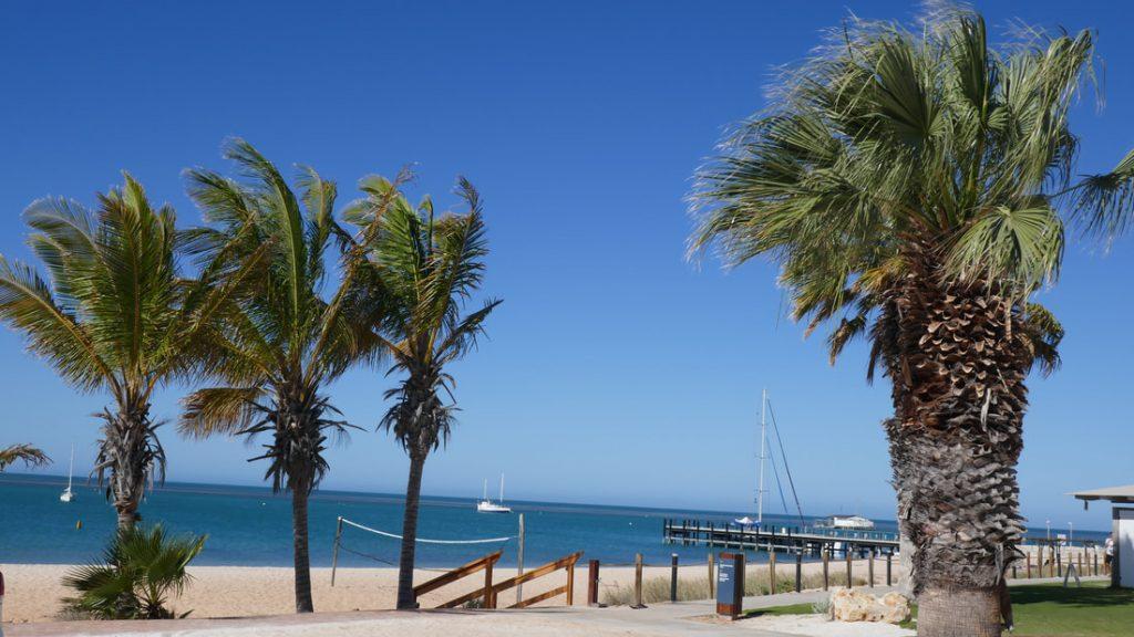Monkey Mia Dolphin Resort WA
