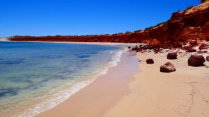 Shark Bay – Time to Touch Another World and Experience it One Bite at a Time!