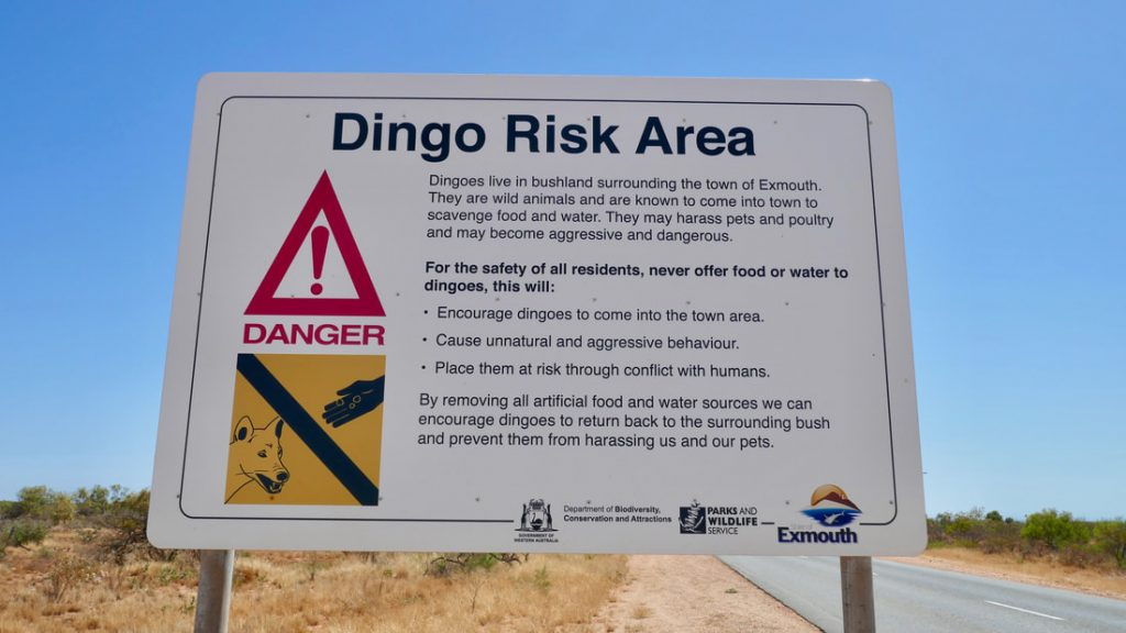 Coral Bay to Exmouth Exmouth - Dingo Warning Sign
