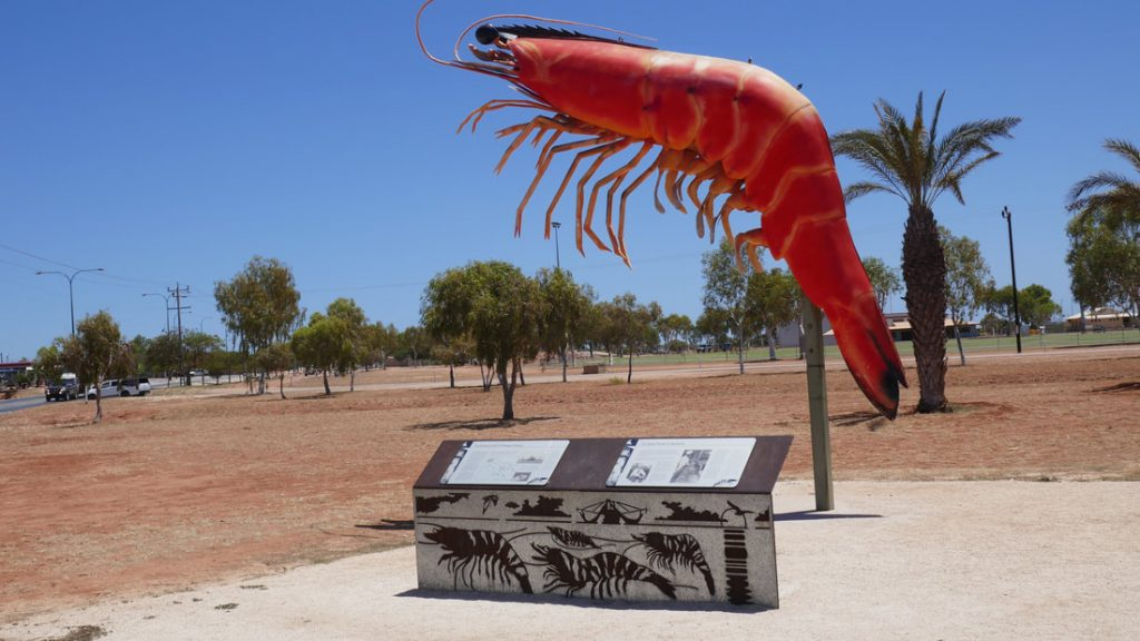 Coral Bay to Exmouth The Exmouth Big Prawn