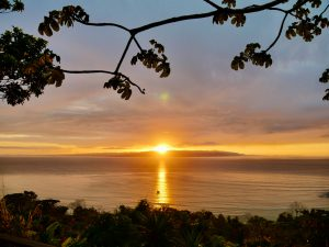 Read more about the article Buen Provecho – Sunrise on the Osa Peninsula