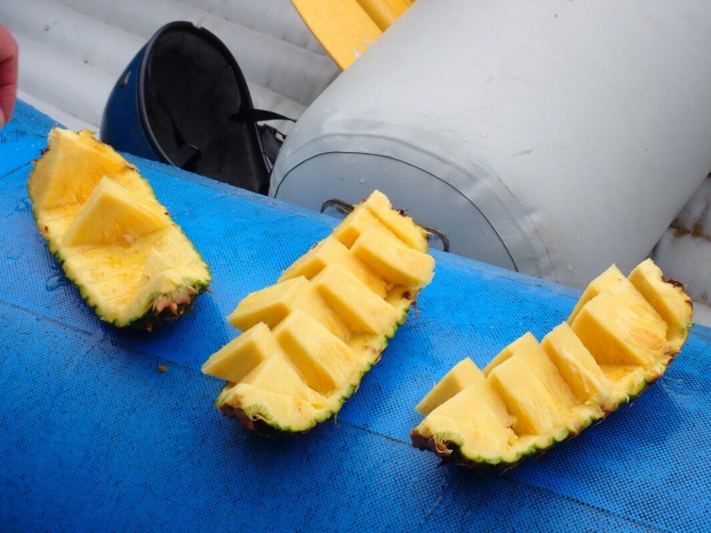 Sarapiqui River Rafting Pozo Azul Avdventures Costa Rica Pineapples sweet to the core