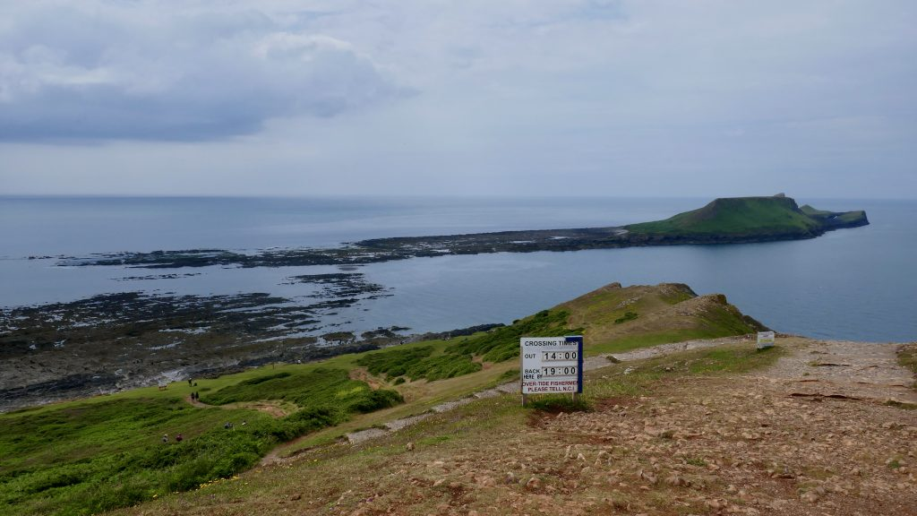 Gorgeous Gower Worm's Head