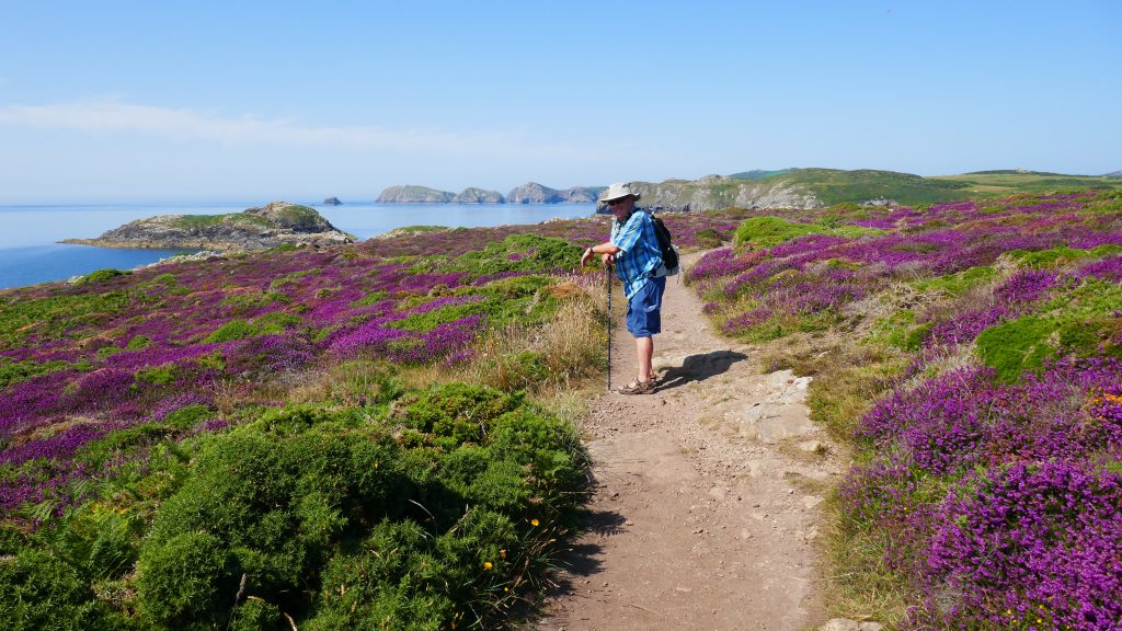 North Pembrokeshire Coastal Path