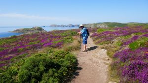 Read more about the article Bore Da – 2 Days Hiking the Spectacular North Pembrokeshire Coast
